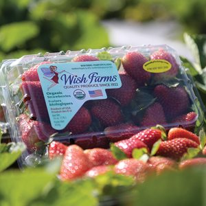Wish Farms Raspberries