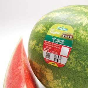 Cut Whole Watermelon