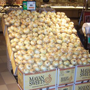 Bulk Onion Display