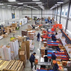 Loffredo Distribution Center
