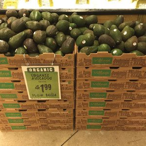 Avocado Boxes