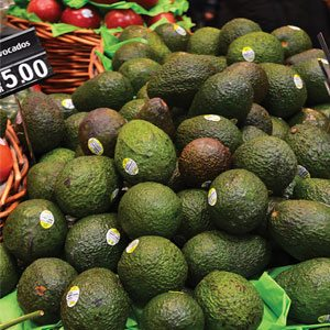 Avocado Display
