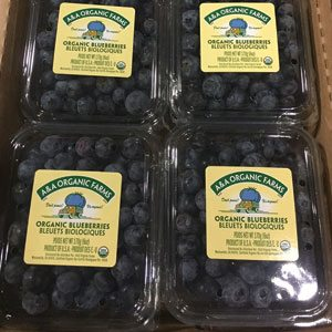 A&A Organic Blueberries