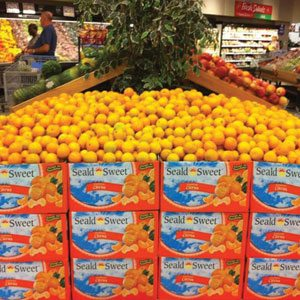 South African Citrus Display