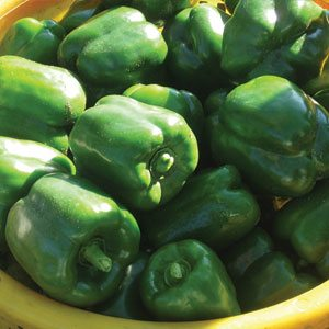 Superior Sales Peppers