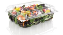 Salad Packaging