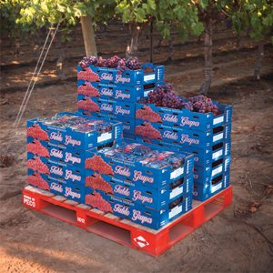 Profits From Pallets | Produce Business Magazine