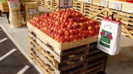 K-VA-T Pallet of Peaches