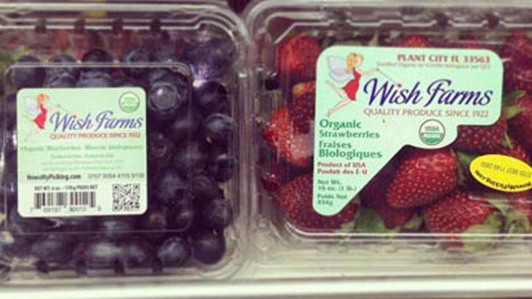 Wish Farms Berry Packaging