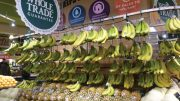 Merchandising for Strong Banana Sales