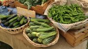 Why New York Offers Archetypal Vegetable Production