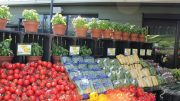 Produce Station Retail Profile