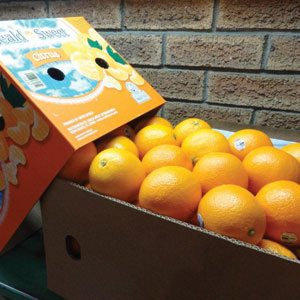 Box of Seald Sweet Citrus