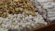 Garlic Display