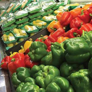 Fligner's Peppers and Squash