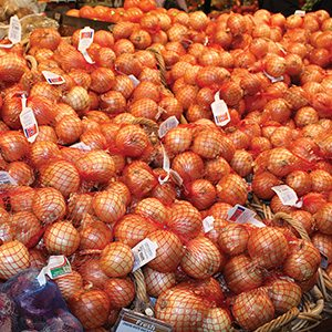 Kroeger Yellow Onions