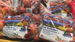 Red Delicious Michigan Apples