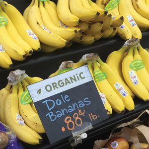 Organic Banana Pricing