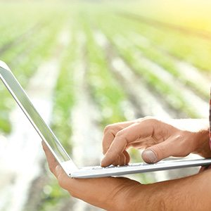 digital produce tracking