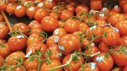 Watching The Shifting Tomato Market Trends