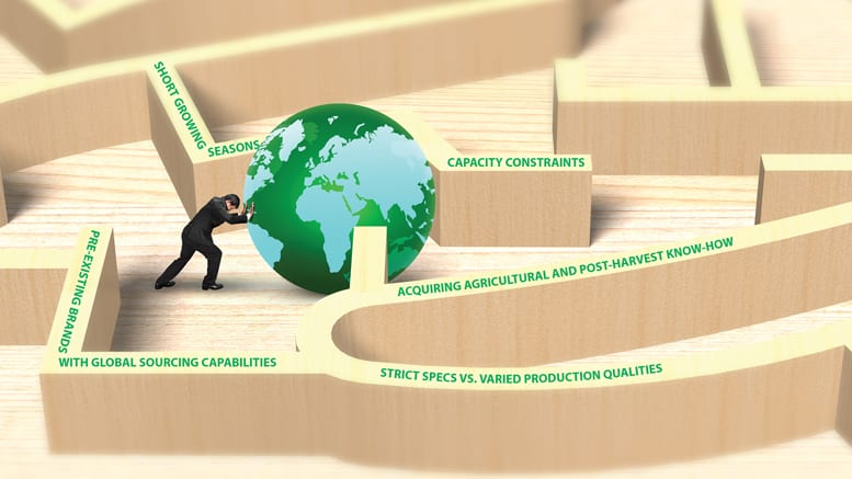 benefits and challenges of global sourcing