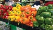 Six Pillars Of Selling More Peppers