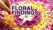 Floral Findings