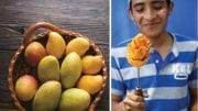 MEXICAN MANGOS OFFER HIGH-QUALITY TREAT FOR RETAILERS