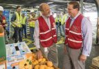 South Africa Citrus: Great Taste At Right Time