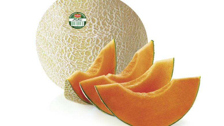Western Melon Toss Up Produce Business However, two common types that named after their place of origin have cantaloupes best grow during the summer months. western melon toss up produce business