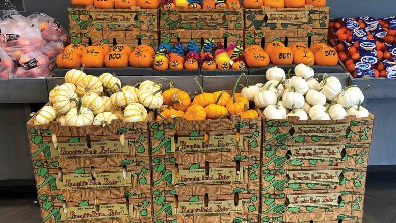 Pumpkin Show 2020.Fall Produce Merchandising Colorful Ways To Display